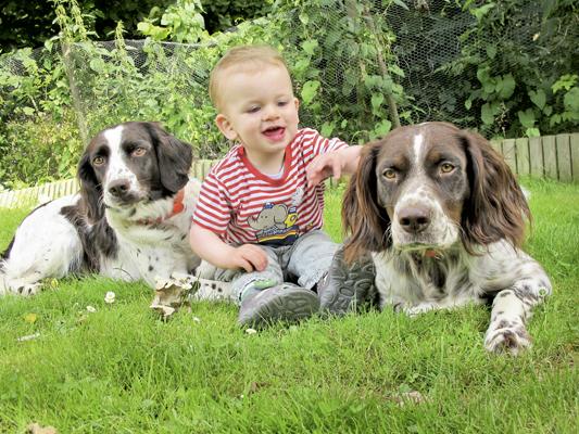 Da Kinder in den Familien stets Kontakt mit Hunden haben, sollten diese parasitenfrei sein