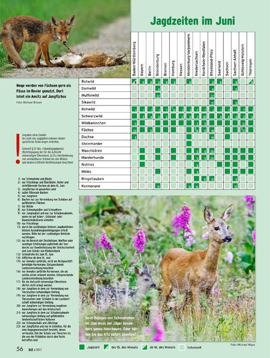 550_Jagdzeiten im Juni