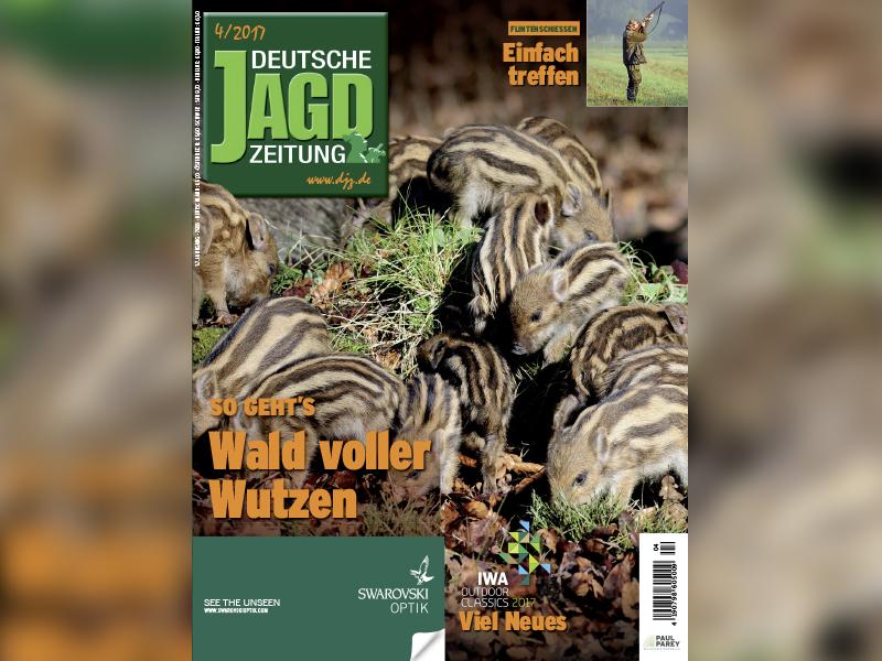DJZ April Ausgabe Heft Inhaltsverzeichnis
