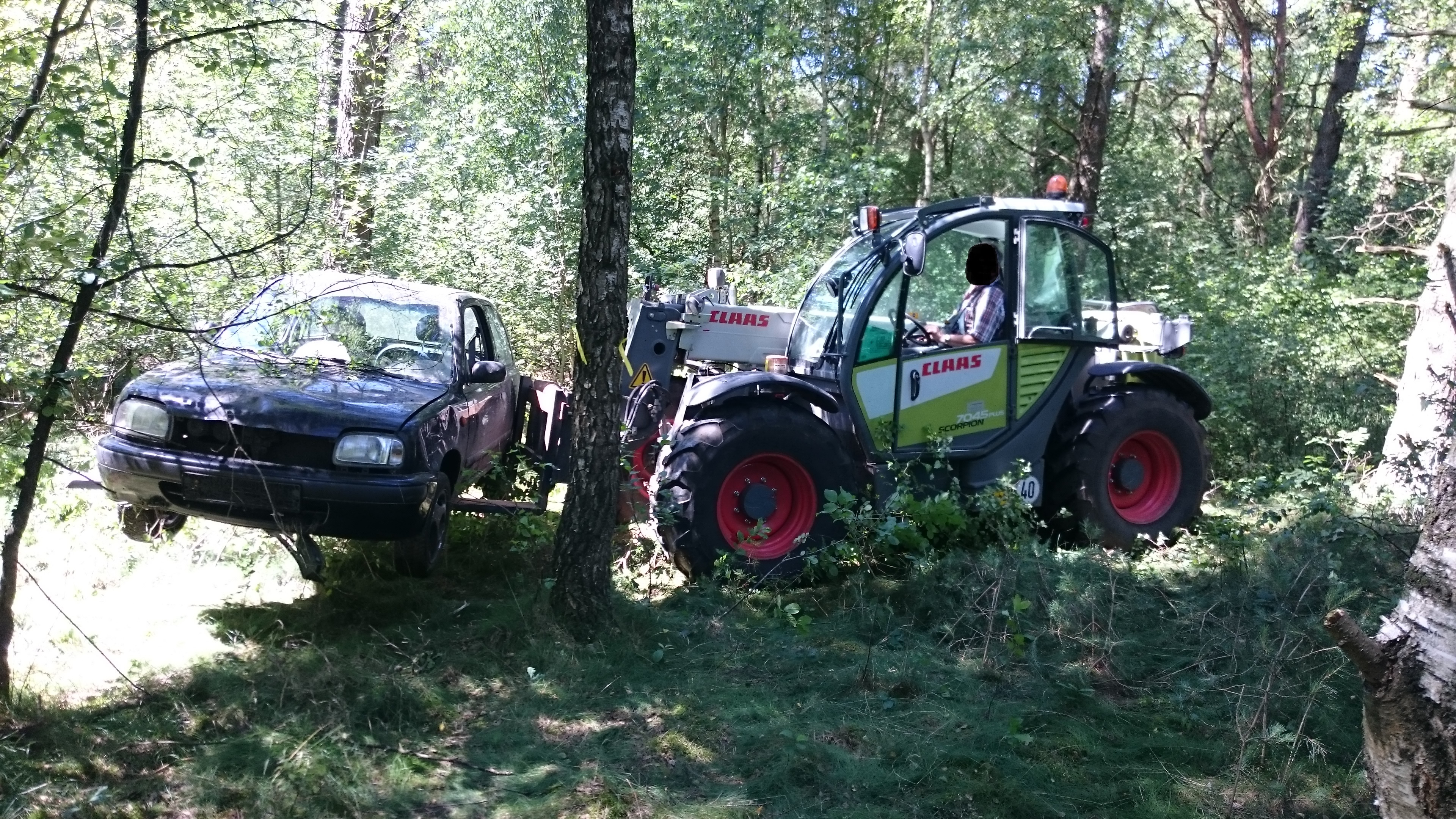 Nissan im Wald entsorgt
