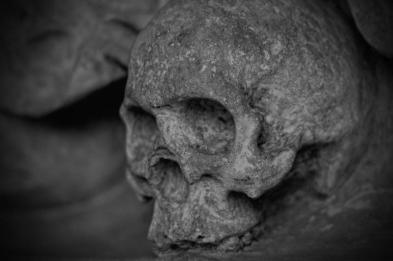 Skelletierter menschlicher Schädel
