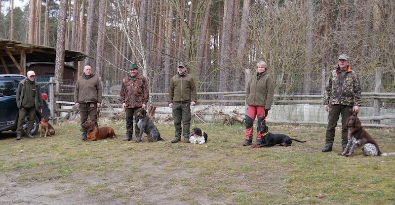 6 Hundegespanne bei der Ausbildung zum Kadaversuchhund in Brandenburg