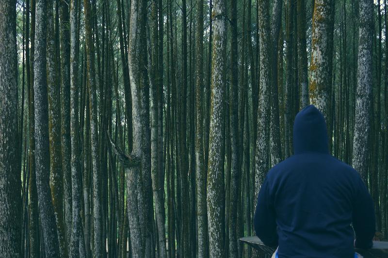 Vermummte Person in einem Wald