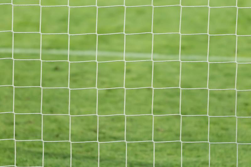 Hirsch verfängt sich in Fußballtor - Deutsche Jagdzeitung