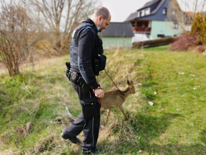 Polizist mit einem Reh