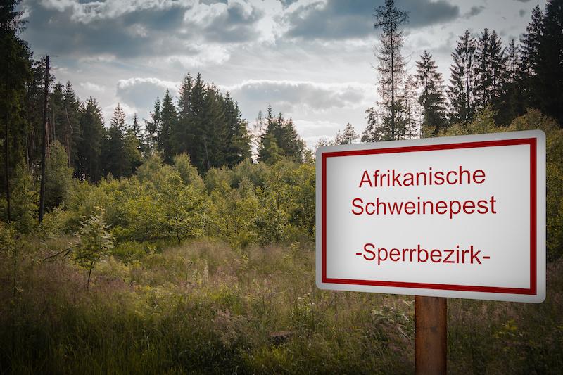 """Schild mit der Aufrschrift """"Afrikanische Schweinepest - Sperrbezirk -"""" vor einem Wald"""